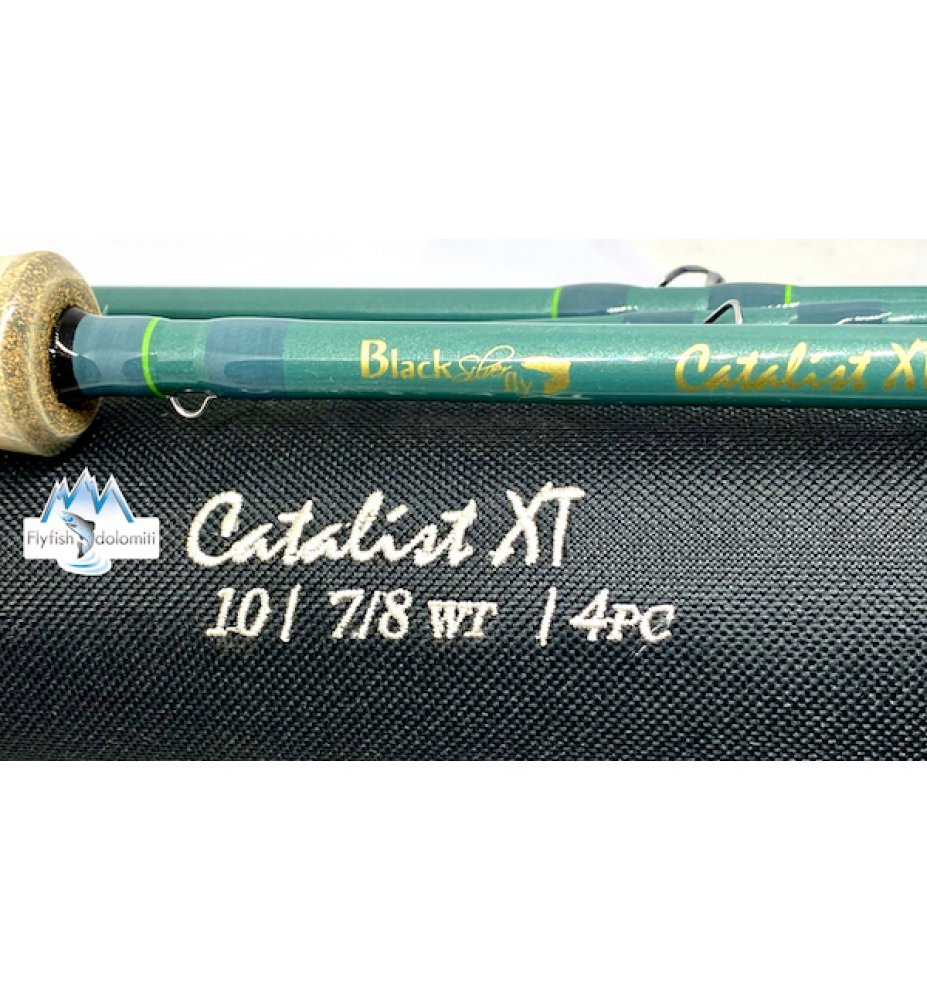 Black Silver Fly Catalist 10''#7/8
