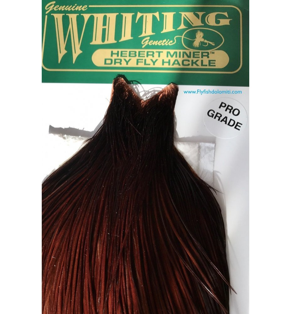 Whiting Herbert MinerDry Fly Hackle Pro Grade Coachman Brown