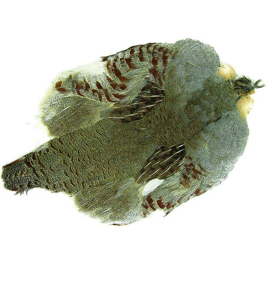 Wapsi Hungarian Partridge Whole Skin Pr1