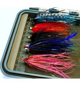 Plan D Pack Max Scatola Streamer
