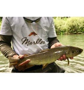 Marbler T-Shirt