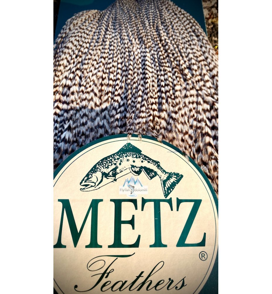 Metz Collo di Gallo #3 dyed Grizzly Blue Dun