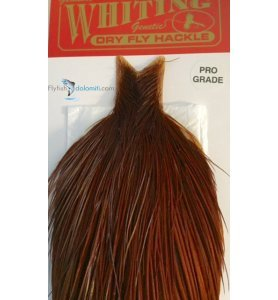 Whiting Dry Fly Hackle Prograde Brown