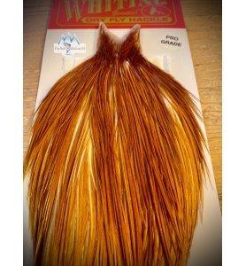Whiting Pro Grade Medium Ginger