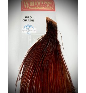 Whiting Pro Grade 1/2 Cape White Dyed Coachman Brown