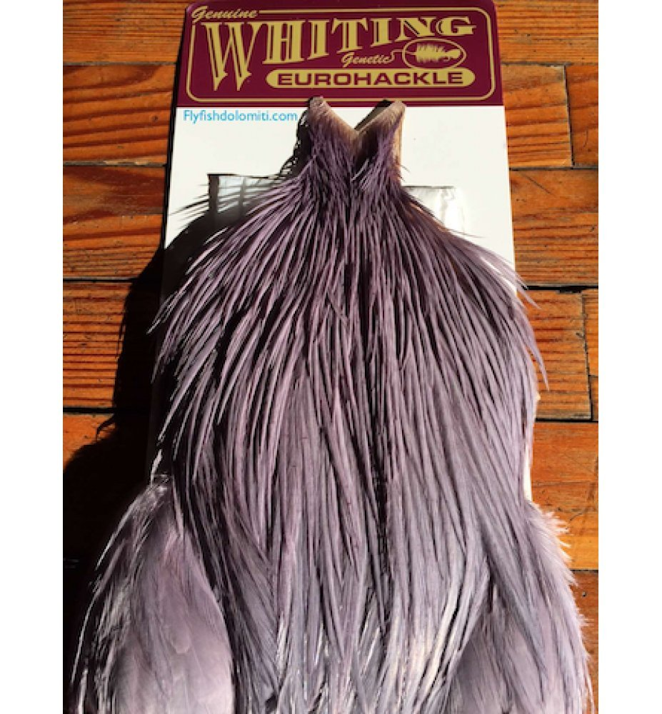 Whiting Eurohackle: Dun/Purple