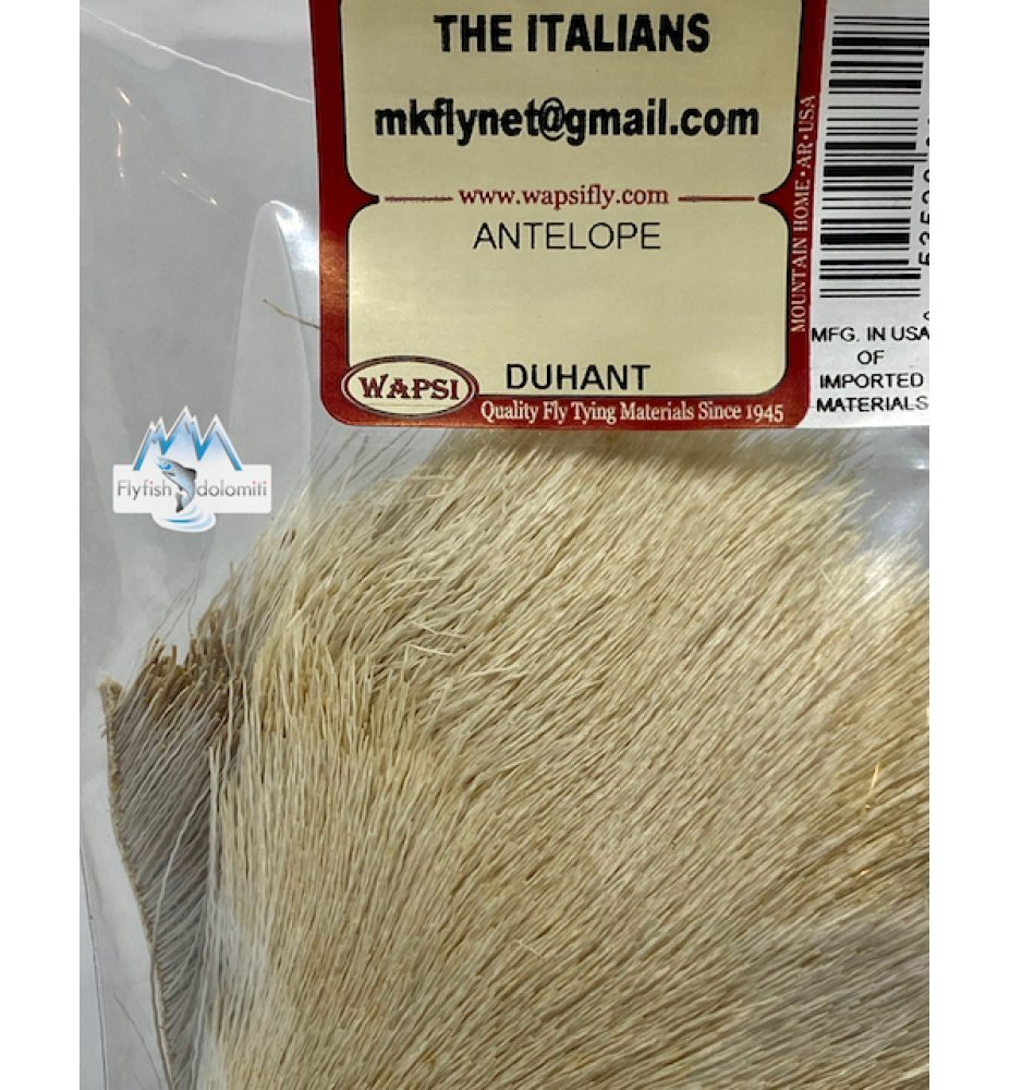 Wapsi Antilope