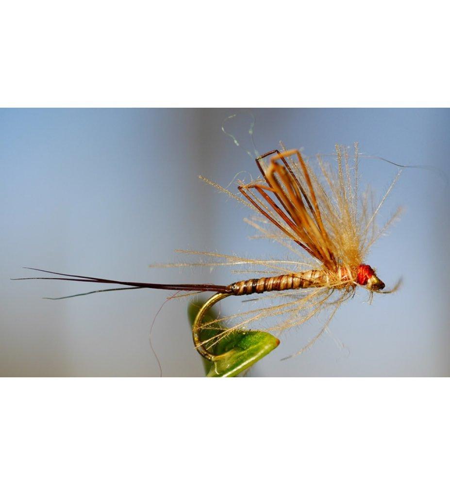 Alcinafly